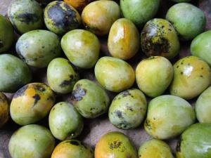 Black Mangoes.